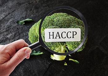 Przygotowanie lokalu do odbioru Sanepid – GASTRO HACCP